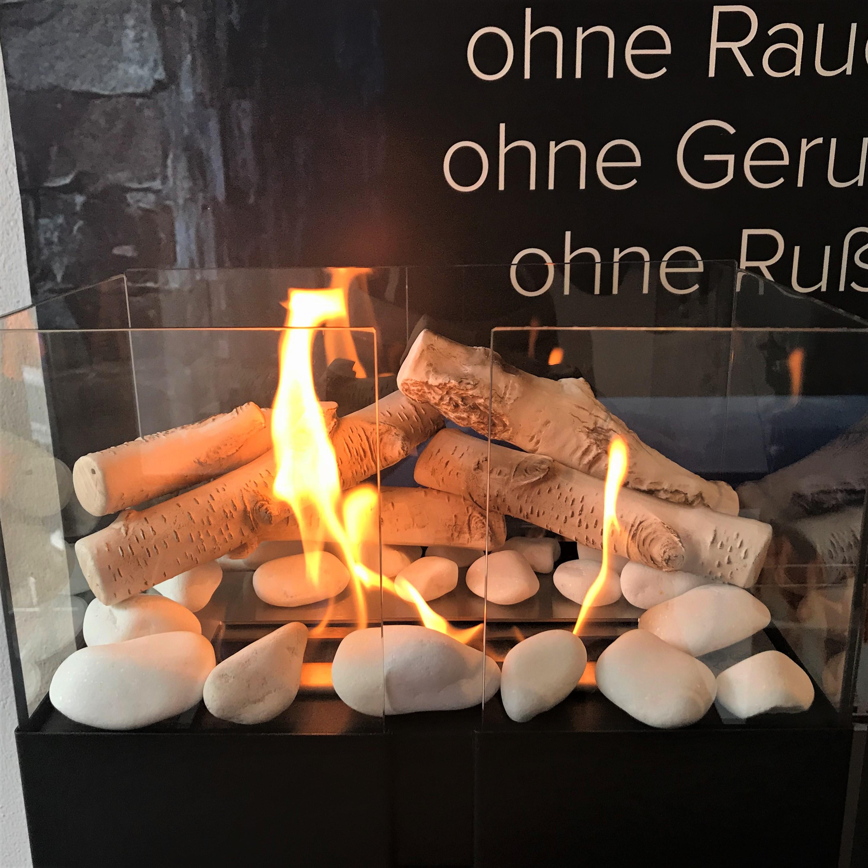 Tuv Gepruft Feuerstelle Biokamin Bioethanol Kamin Mit Deko Holz